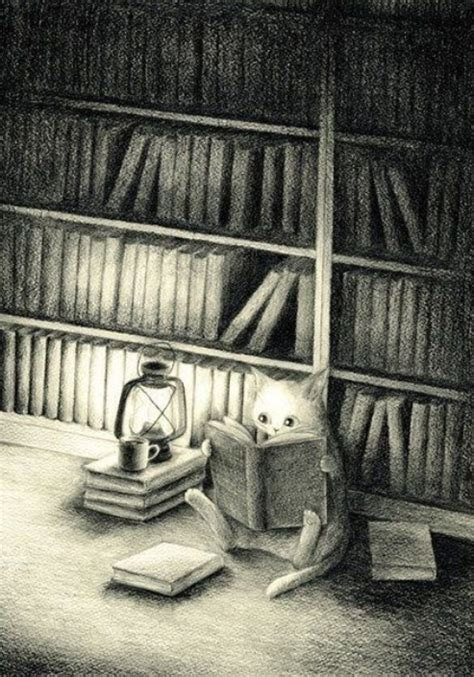 cat reading bookish quotes