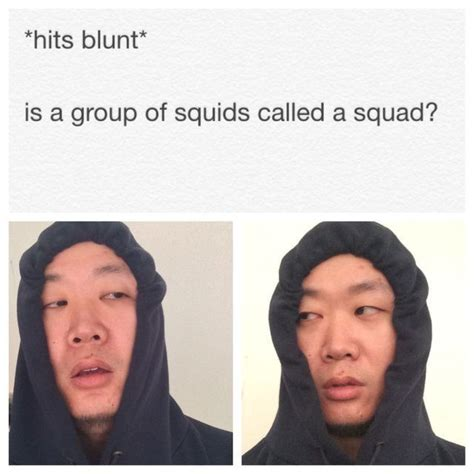 Hits Blunt Memes - i m obsessed with these quot hits blunt quot memes viv s pinterest memes random and humor