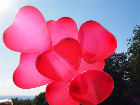 Red Heart Balloons image - Free stock photo - Public ...