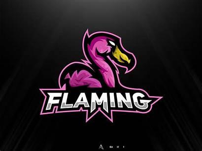 Flamingo Mascot Dribbble Flaming