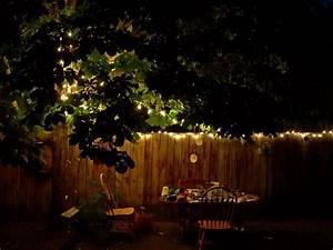 Free, Photo, Garden, Evening, Summer, Evening