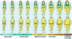 Muskelmasse Berechnen Tabelle : bmi visual graph see the body mass index visually ~ Themetempest.com Abrechnung