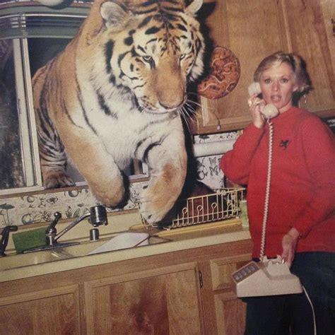 actress tippi hedren watches  tiger jump