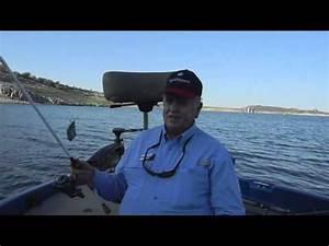 Striped bass fishing and lake pleasant