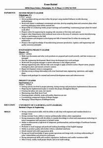 automated resume builder project leader resume samples velvet jobs