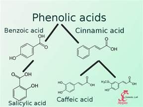 Salicylic Acid for Foods Chart