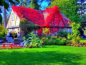Modern, Beautiful, Cottage, House, Grass, Style, Hd ...