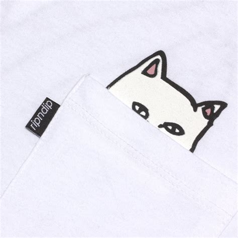 shirt pockets reveal  cats arent  friendly