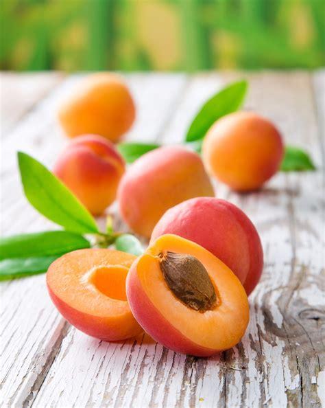 cuisine de terroir recettes avec des abricots tout savoir sur l 39 abricot marciatack fr
