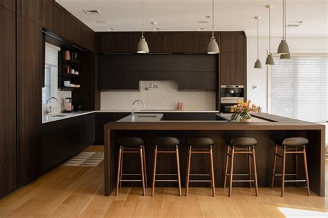modern kitchen cabinets alpine modiani kitchens premium kitchens nj