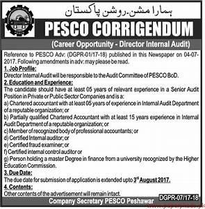Director Internal Audit Required for PESCO - PaperPk