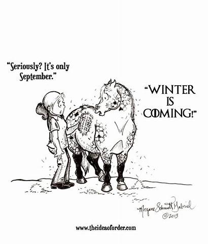 Winter Coming Horse Horses Quotes Cartoon Funny