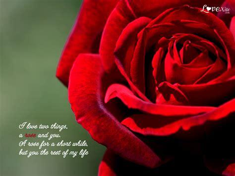 romantic love wallpapers  quotes quotesgram