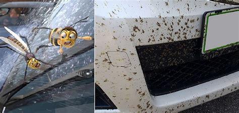 comment nettoyer des si鑒es de voiture en tissu 19 façons géniales pour faire briller sa voiture soi même meteofan