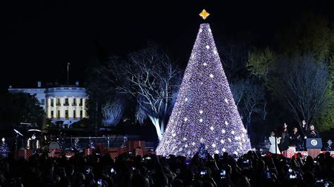 first family lights national christmas tree nbc connecticut