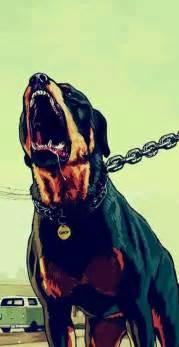 Chop Gta 5 Franklins Dog Gta Grand Theft Auto