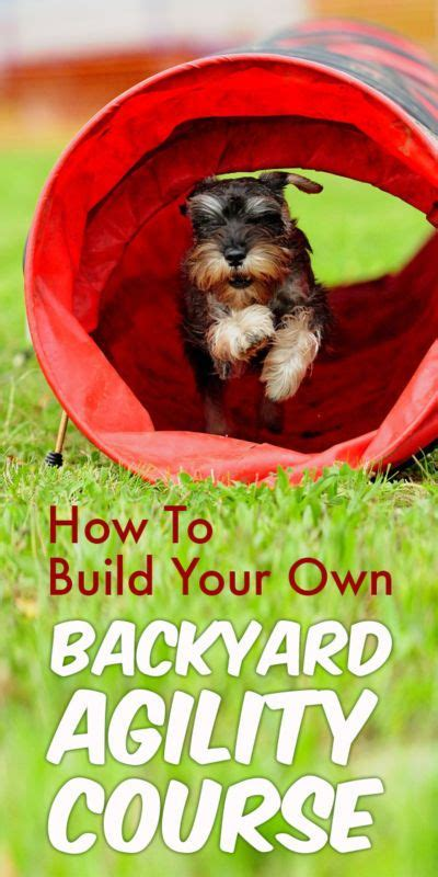 Build Your Own Backyard by How To Build Your Own Backyard Agility Course Backyard