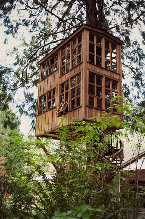 architecture house designs tree house design ideas for modern family