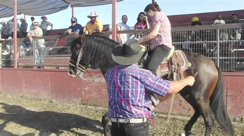 rodeo en chino ca youtube