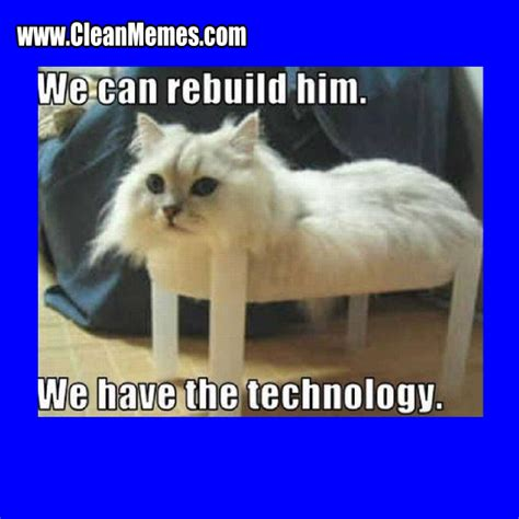Funny Cat Memes Clean - cat memes clean memes the best the most online page 2