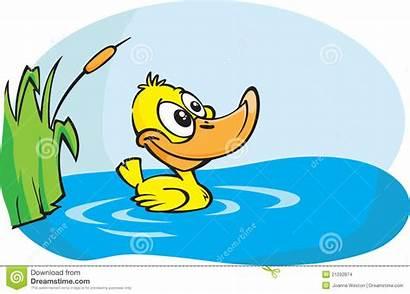 Duck Yellow Pond Cartoon Duckling Place Illustration