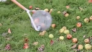 Tondre La Pelouse Sans Ramasser : ramasse pomme ou ramasse fruits vous serez s duit ~ Melissatoandfro.com Idées de Décoration