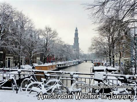 Amsterdam Weather In January