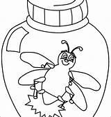 Bug Coloring Getdrawings Pill sketch template