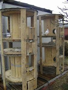 Wire Spool  Coops And Chicken Coops On Pinterest
