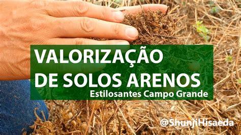 TRANSFORMANDO SOLOS ARENOSOS - YouTube