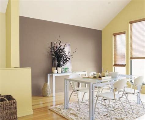brown feature wall  cream walls paintright colac