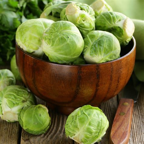 seeds sprouts brussels vegetable island long improved brussel vegetables amazon heirloom plants garden cauliflower snowball seed planting care edenbrothers quick