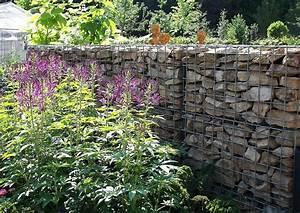 Gabionen Gartengestaltung Bilder : gartengestaltung gabionenund spinnenpflanzen ~ Whattoseeinmadrid.com Haus und Dekorationen