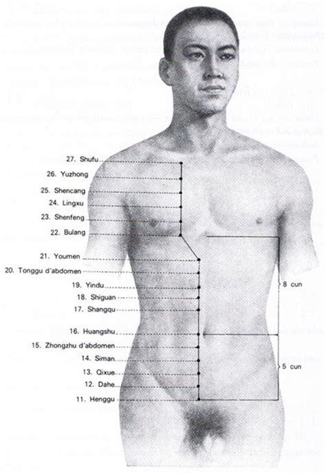 meridien du poumon acupuncture meridien du rein tao et spiritualit 233