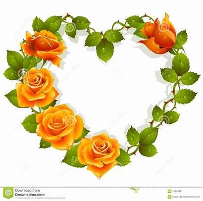 Orange Heart Roses Shape Framework Vector Illustration