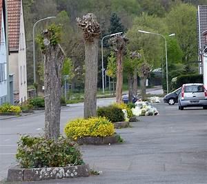 Rosa Blühende Bäume April : kalenderblatt ~ Michelbontemps.com Haus und Dekorationen
