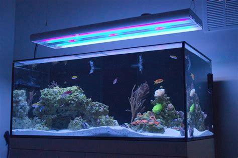 pacific sun aquarium lighting system sangheili 39 s triton powered cadlights 100g reef reef2reef