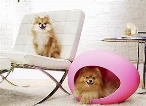 Panier Chien Design : niche et fauteuil pour chien ~ Teatrodelosmanantiales.com Idées de Décoration