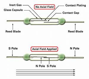 What Is A Reed Relay