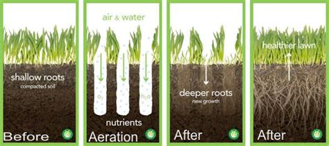 benefits of aeration core aeration eco lawn san antonio llc