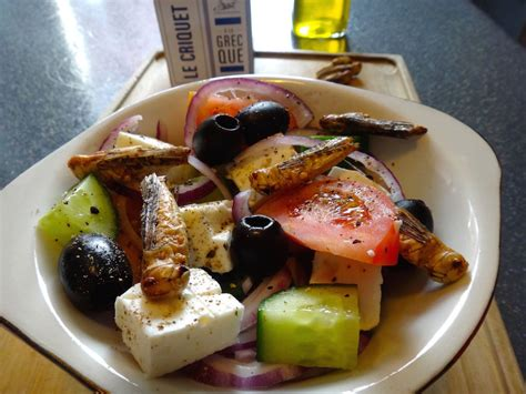 cuisine insectes comestibles review quot le criquet à la grècque quot by jimini 39 s entomoveproject