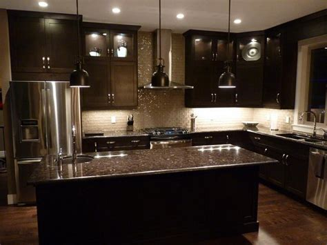 Kitchen Designs Modern Kitchen Design Elegant Dark