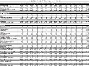 how to make projected income statement in excel personal With projected financial statement template