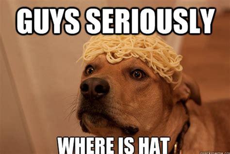 Funny Doge Memes - funny dog memes fun