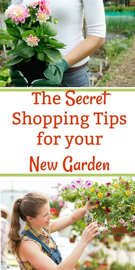 Starting A New Garden Secret Shopping Tips You Need To Know