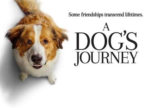 tentang cinta kesetiaan  harapan   dogs