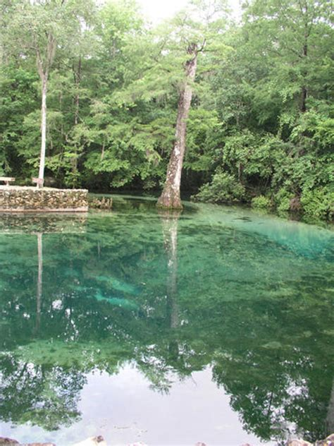 leon springs ponce park state florida spring fl water guide
