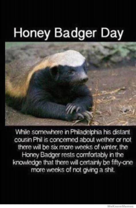 Badger Memes - 17 best ideas about honey badger humor on pinterest honey badger meme honey badger and mmm
