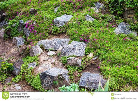 Graue Steine Im Grünen Garten Stockfoto  Bild 50029399