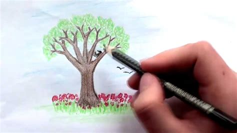 draw  tree  colored pencils lesson  youtube